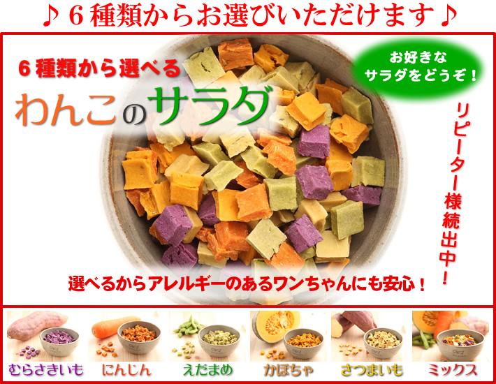 6種類から選べるわんこのサラダ